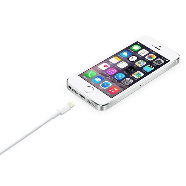 Apple 2 Meter (6 Feet Long) Lightning to USB Cable - White (10 Pack)