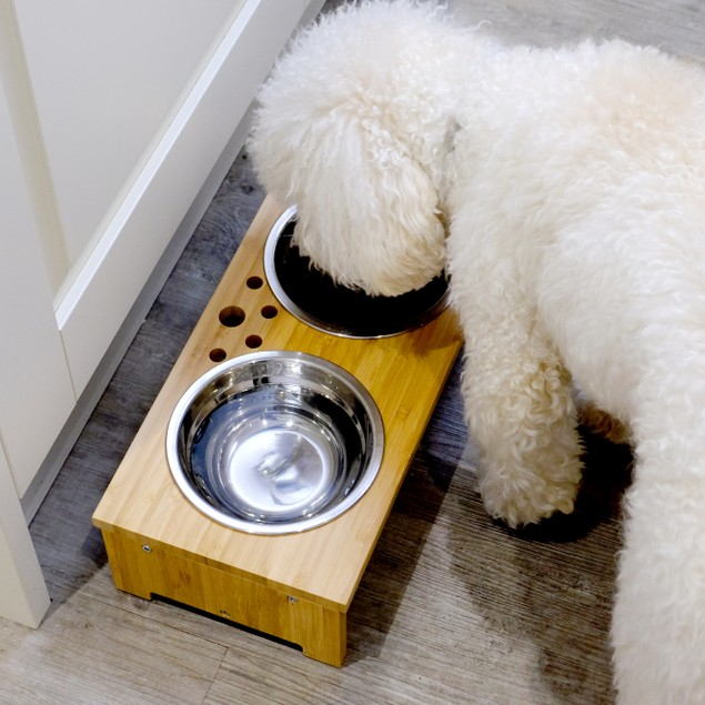 Raised Pet Bowls | For Dogs and Cats | MandW Small
