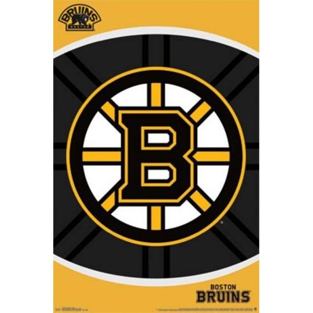 Boston Bruins Logo Poster National Hockey League NHL Gift