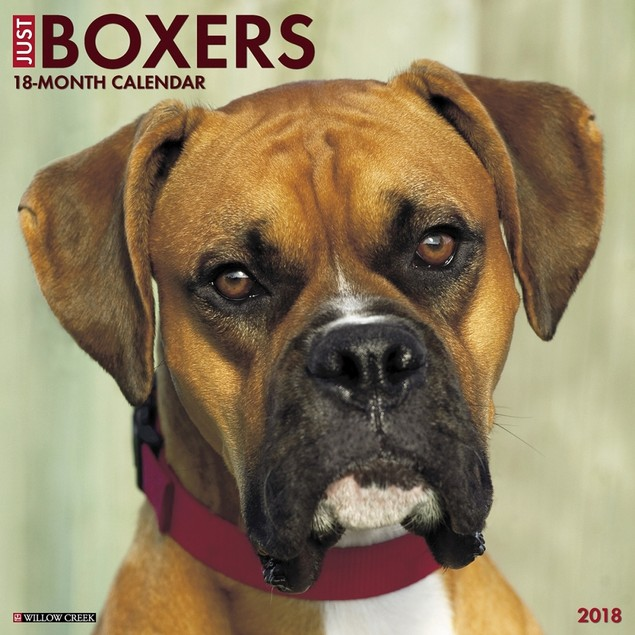 Just Boxers Wall Calendar, Boxer by Calendars