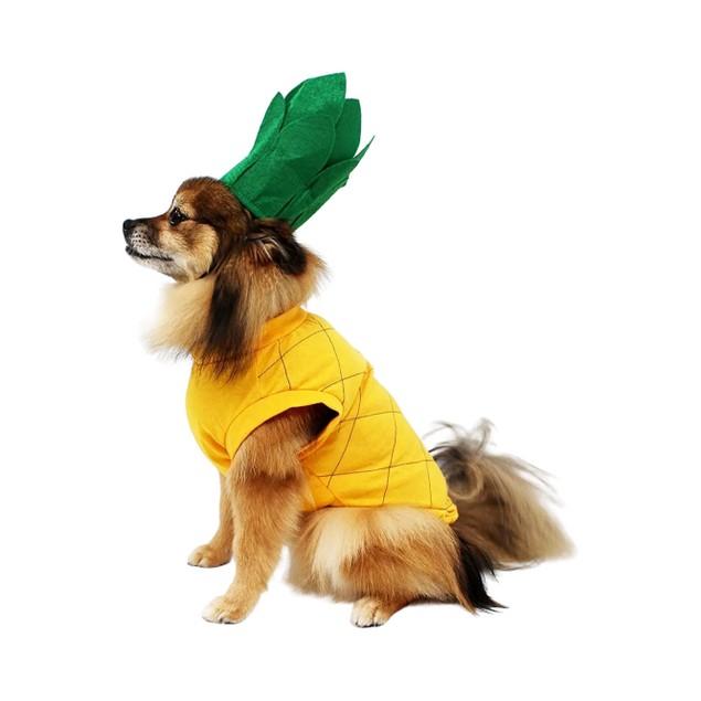 Midlee Pineapple Dog Costume