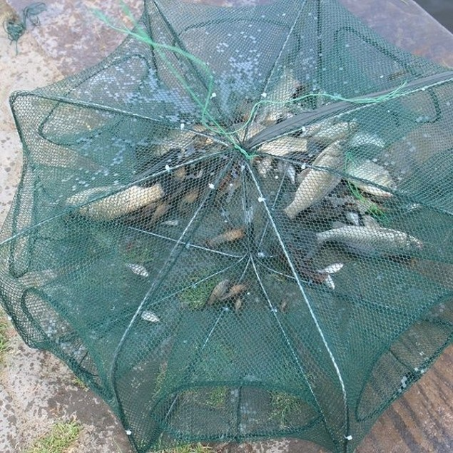 Hexagonal Foldable Automatic Fishing Net for Shrimp, Crab and Fish