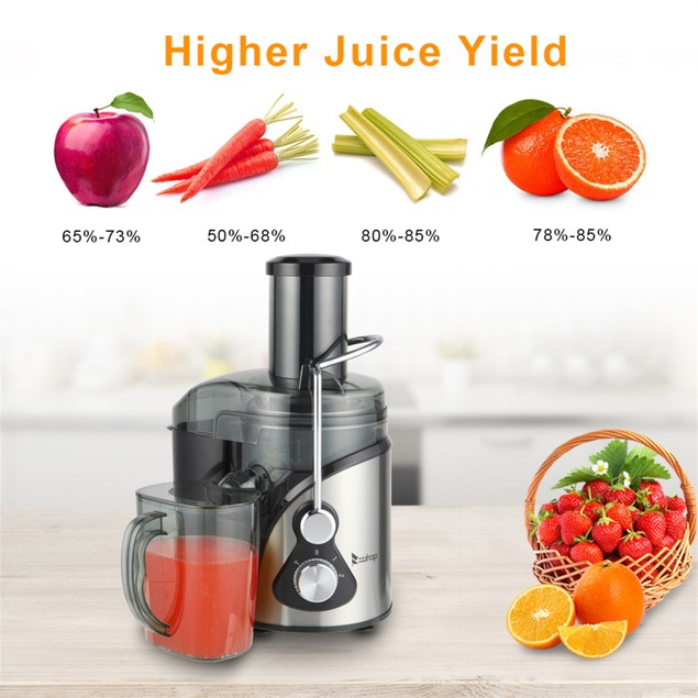 Large Diameter 1000Ml Juice Cup 1500Ml Pomace Cup Third Gear Electric Juicer Stainless Steel