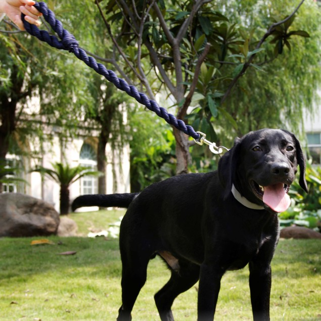 Pet Life Tough-Tugger Industrial-Strength Shock Absorption Woven Dog Leash