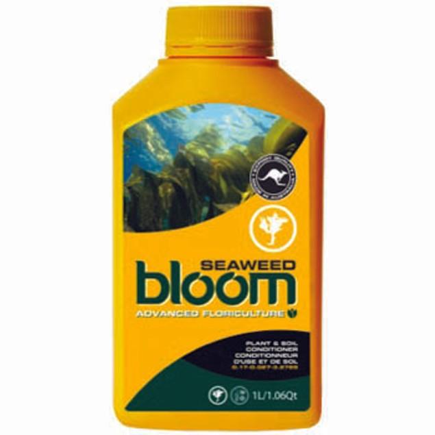 Bloom Seaweed 2.5L