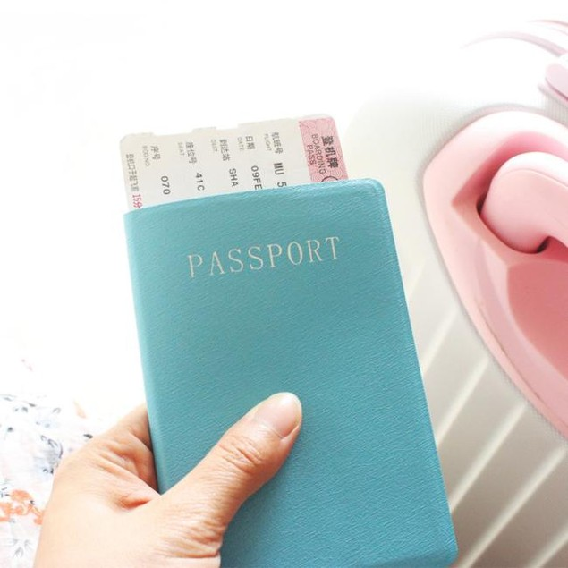 Travel Passport ID Card Cover Holder Case Protector Organizer