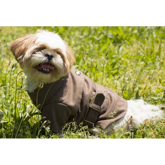 Galore Back-Buckled Fashion Wool Pet Coat