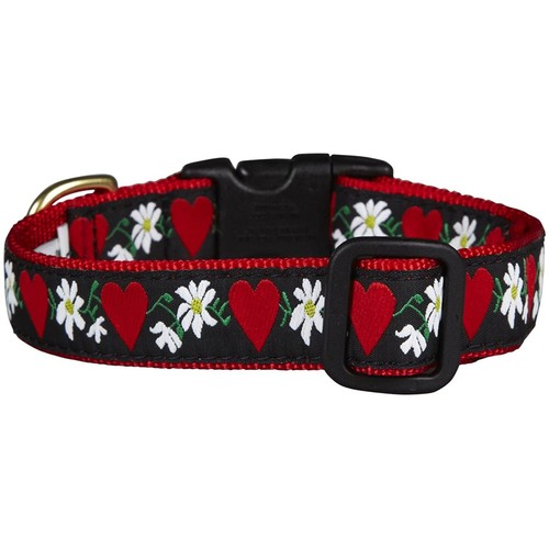 Up Country Hearts & Flowers Dog Collar - Medium