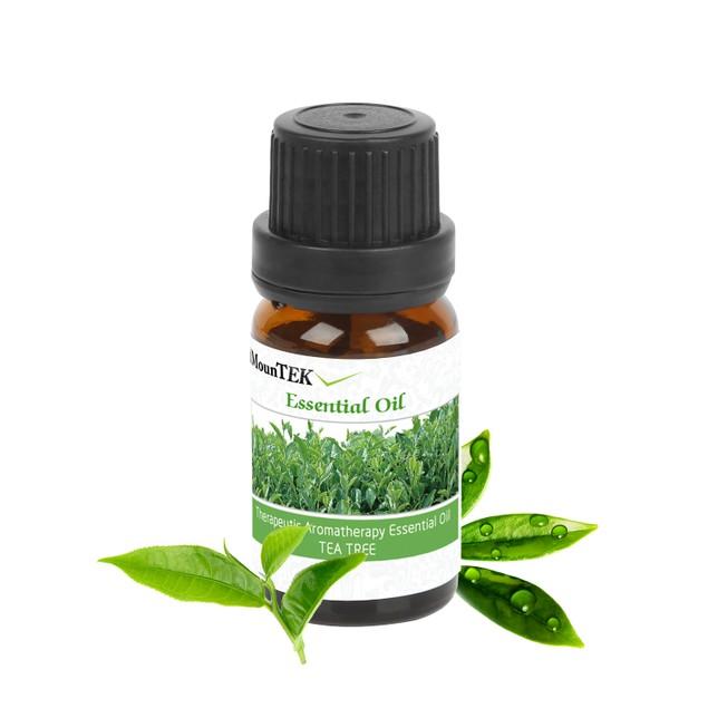 6-Bottle Therapeutic Aromatherapy Essential Oils