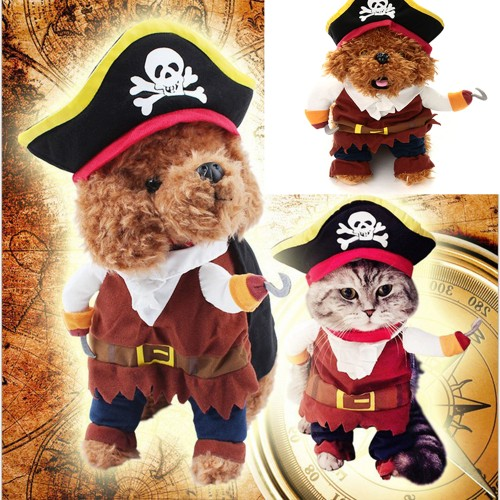 Dog Halloween Pirate Costume