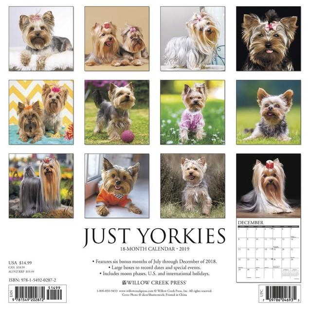 Just Yorkies Wall Calendar, Yorkshire Terrier by Calendars