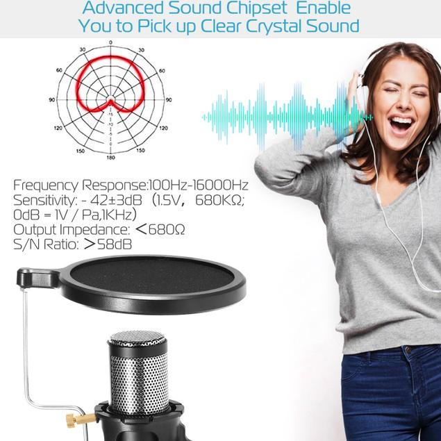 Professional Condenser Microphone Studio Recording Cardioid Microphone