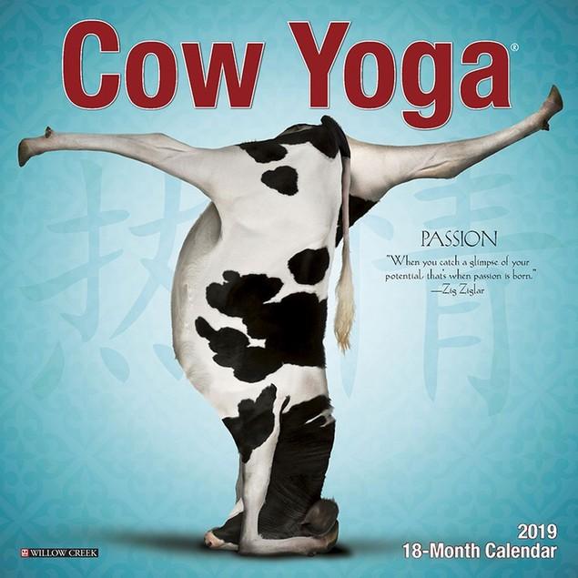 Cow Yoga Mini Wall Calendar, Cows by Calendars