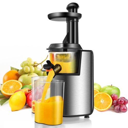 Costway Slow Masticating Juicer Cold Press Stainless Steel w/ Brush