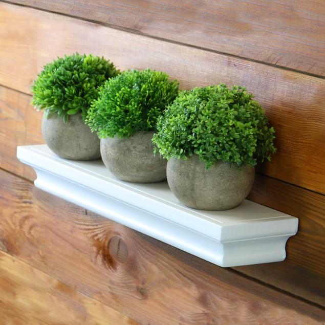 Artificial Plants - Set of 4   MandW