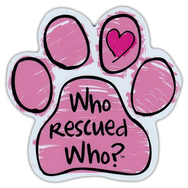"Pink Who Rescued Who Paw Magnet Dog Cat 5.5"" x 5.5"" Shaped Pet Puppy Kitten"