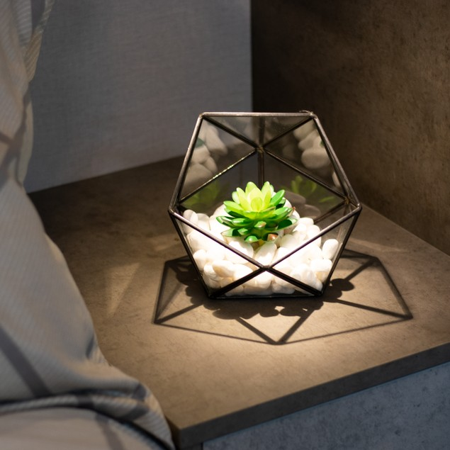 Half Ball Glass Terrarium | MandW