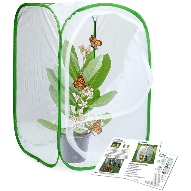Insect Butterfly Habitat Feeding Cultivation Terrarium Mesh Cage
