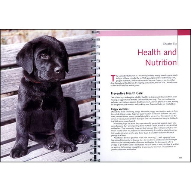 Lab Retrievers Barron's Dog Bible, Labrador Retriever by Barrons Educationa
