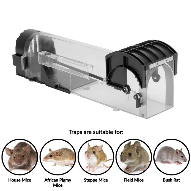 Humane Mouse and Rodent Trap - Set of 2 | Pukkr