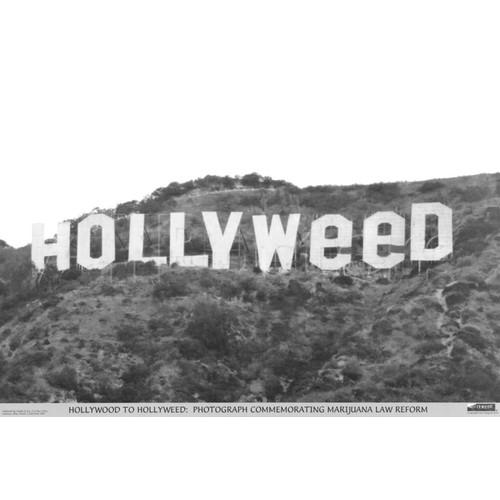 Hollyweed Poster 36 x 24 Hollywood Weed Marijuana Pot Head Gift