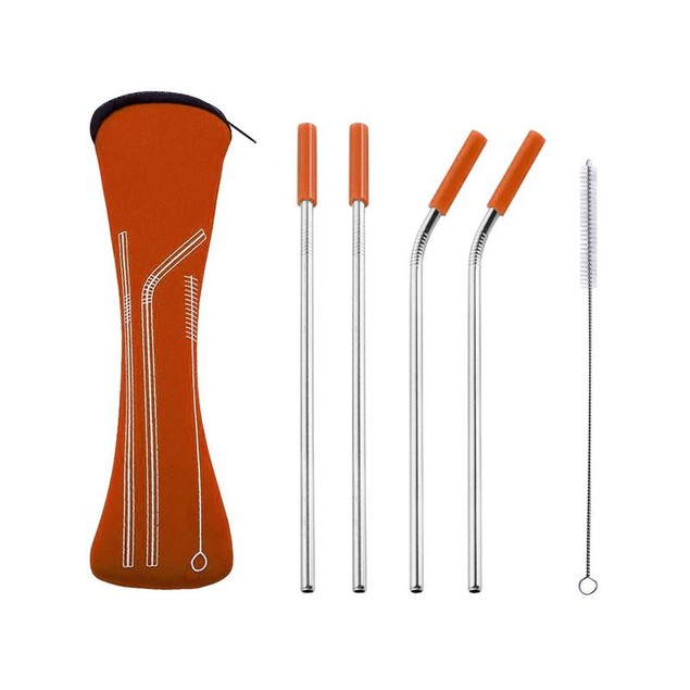 Reusable Stainless Steel Straw Set with Carrying Case and Cleaning Brush