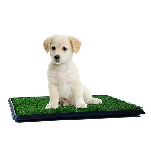 Puppy Potty Trainer  Restroom for Pets 16 x 20 Washable Faux Grass Mat