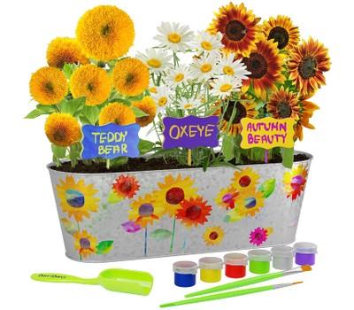 Paint and Plant Sunflower Growing Kit - Grow Autumn Beauty, Teddy Bear, Oxeye Sun Flowers Was: $24.99 Now: $22.99.