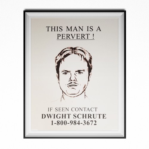 This Man Is A Pervert If Seen Contact Dwight Schrute Poster 11 x 17