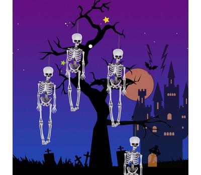16 Inches Halloween Decoration Skeleton Full Body Halloween Skeleton Was: $29.99 Now: $8.49.