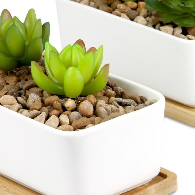 Ceramic Planter and Bamboo Base   MandW 2 x Rectangular