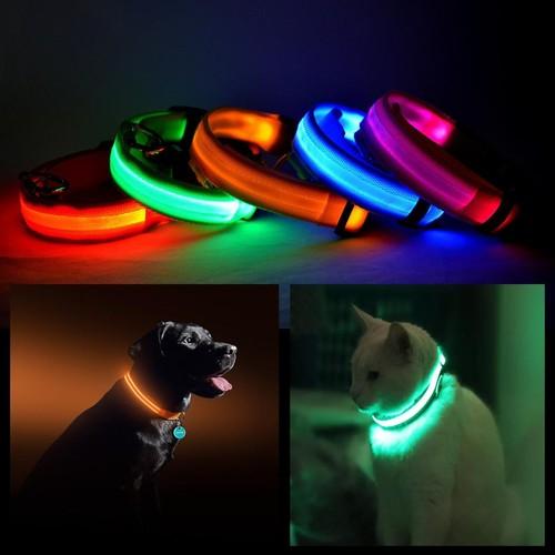 LED PET Safety Halo Style Collar