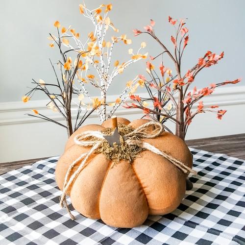 Plump Pumpkin