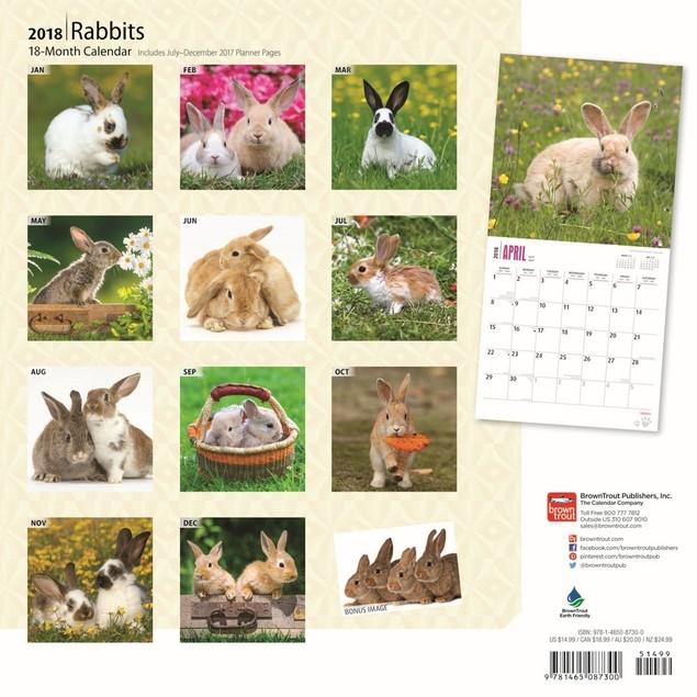 Rabbits Wall Calendar, Rabbits by Calendars
