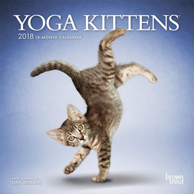 Yoga Kittens Mini Wall Calendar, Kittens by Calendars