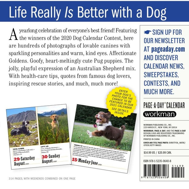 365 Dogs Desk Calendar, More Dogs by Calendars