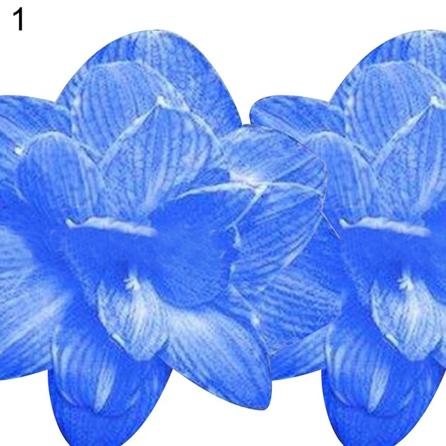 2 Pcs Amaryllis Bulbs Hippeastrum Home Balcony Plants Flower Plants Seeds