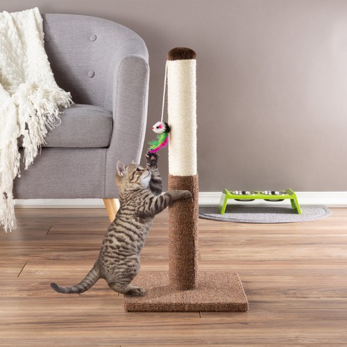 Cat Scratching Post - Tall Scratcher for Cats and Kittens(24.5 Inch)