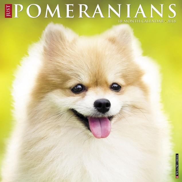 Just Pomeranians Wall Calendar, Pomeranian by Calendars