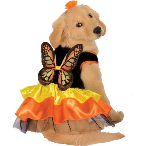 Monarch Butterfly Pet Costume Dog Black Orange Yellow Wings Dress