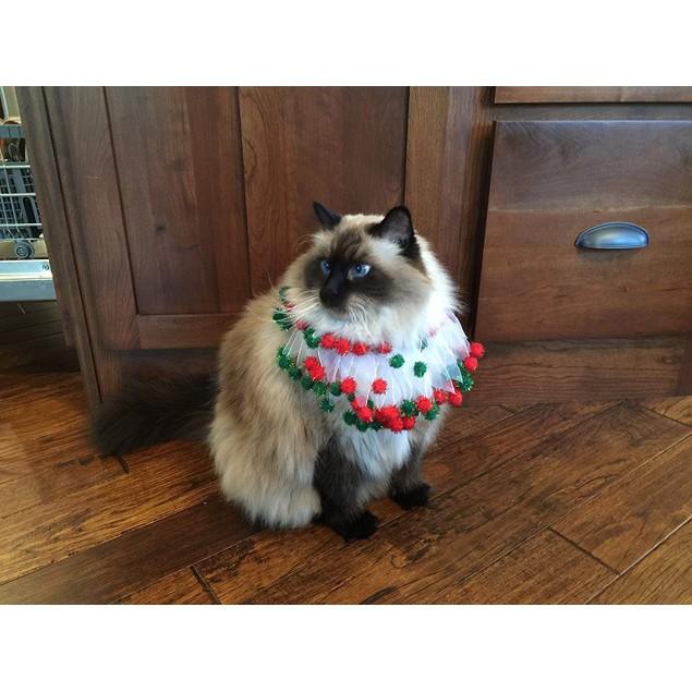 Midlee Christmas Pom Pom Decorative Dog Collar