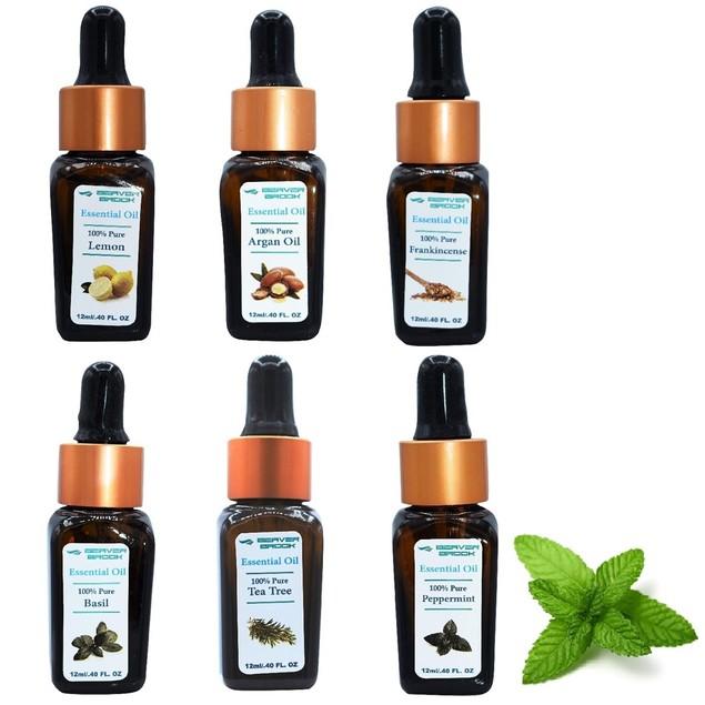 Beaver Brook Botanical Set Essential Oil Bottle Dropper - 6 Pack
