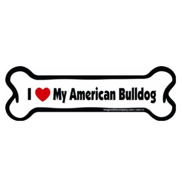 I Love My American Pitbull Bone Magnet