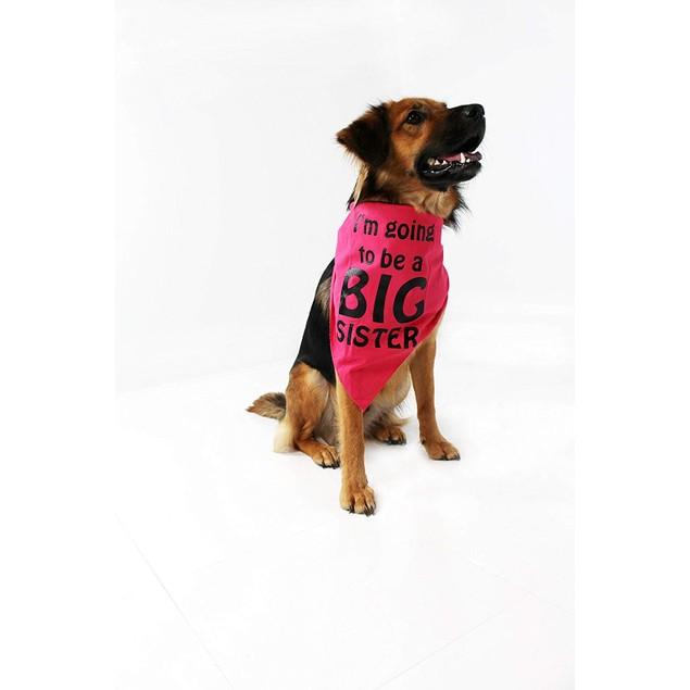 Midlee I'm Going to be a Big Sister Dog Bandana (Small)