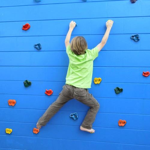 Textured Climbing Holds Rock Wall Indoor/Outdoor Playground set for Kids