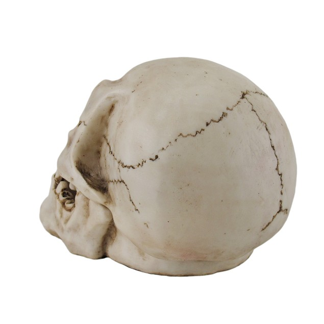 Human Skull Shaped Incense Burner Box Incense Holders
