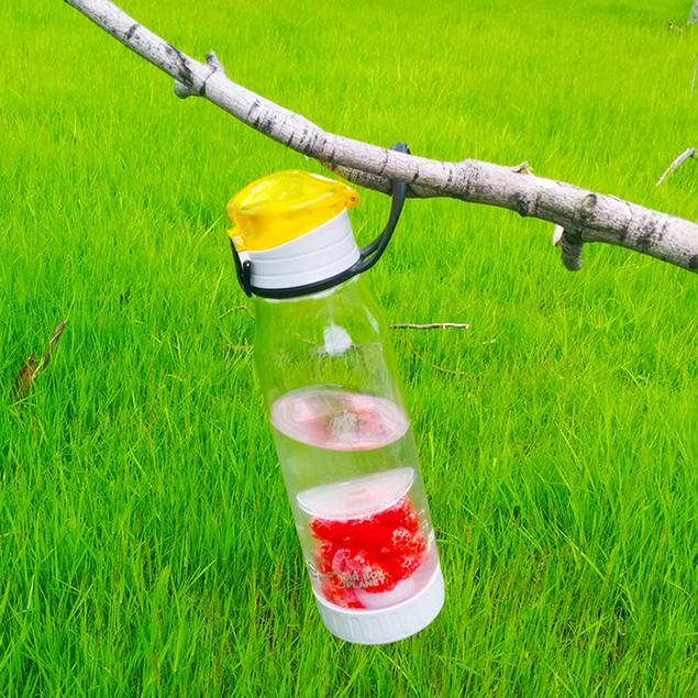 2-in-1 Fruit & Tea Sports Water Bottle Infuser
