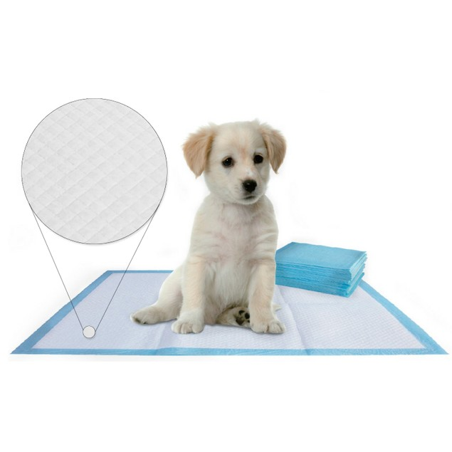 "Multi-Pack 12"" x 16"" Puppy Pet Absorbent Training Pads"