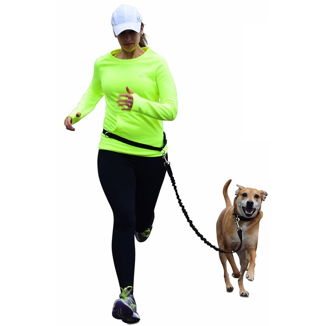 Hands Free Pet Running Leash