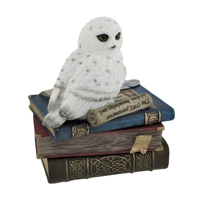 Wise Snow Owl Resting On Scholar`S Books Trinket Decorative Boxes